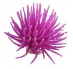 Corail Artificiel Violet 9cm En Plastique Décoration Aquarium Reviews