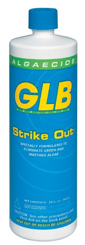 GLB 71114 1-Quart Strike Out Algaecide for Swimming Pool or Spa Reviews